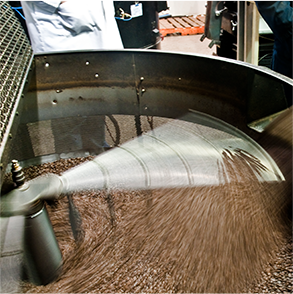 Canterbury Coffee beans being cooled after roasting