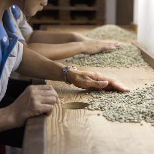 Fair Trade Farming Coffee