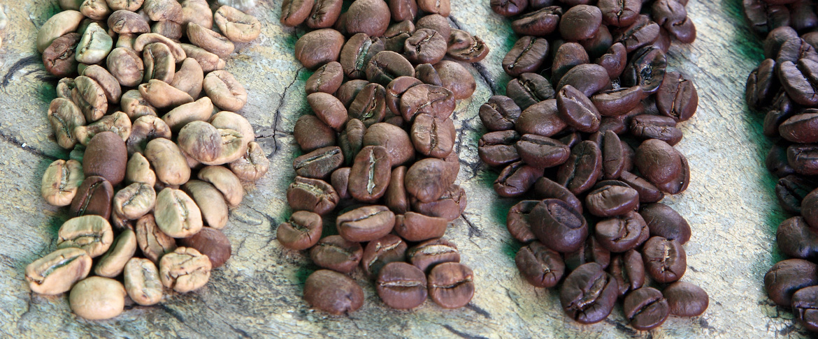 Different types of roasted Canterbury Coffee beans